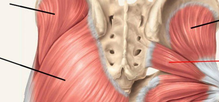 *Videoblog* Pijn in bil en been? Misschien heb je last van het piriformis-syndroom!
